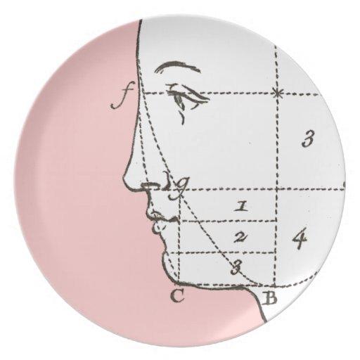 Placas de cena estéticas del perfil del cirujano p plato para fiesta
