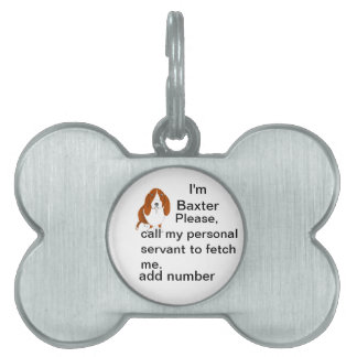 Placas de identificación adaptables placa de nombre de mascota