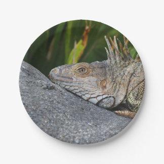 Placas de papel de la iguana plato de papel de 7 pulgadas