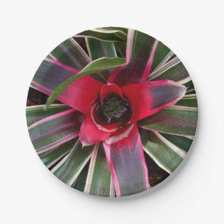 Placas de papel de la planta del florero plato de papel de 7 pulgadas