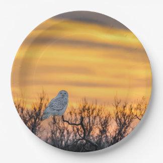 Placas de papel de la puesta del sol del búho platos de papel