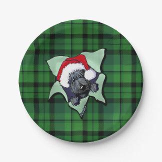 Placas de papel de la RÁFAGA del escocés del