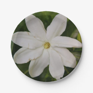 Placas de papel de Tahitian Gardena Plato De Papel De 7 Pulgadas