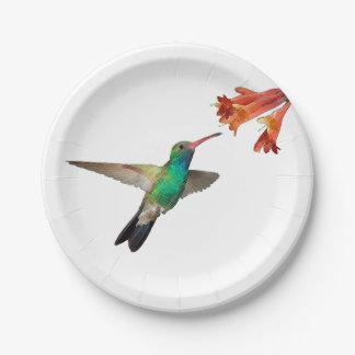 Placas de papel del colibrí del vuelo platos de papel