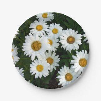 Placas de papel del placer de la margarita plato de papel de 7 pulgadas