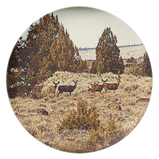 Placas del ciervo mula plato para fiesta