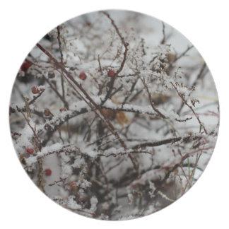 Placas del país de las maravillas del invierno platos para fiestas
