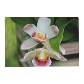 Placemat - orquídea en abanico tapete individual