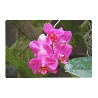 Placemat - orquídea tapete individual