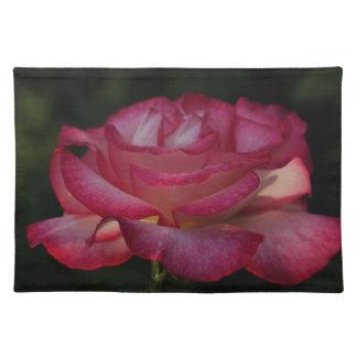 Placer color de rosa fotografiado por Tutti