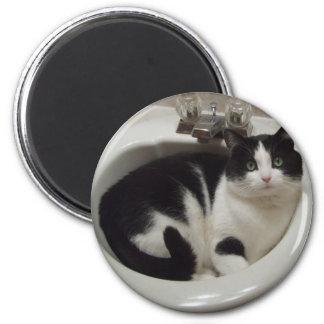 Placer de los amantes del gato imán redondo 5 cm