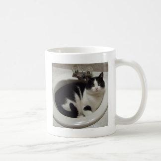 Placer de los amantes del gato taza
