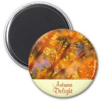 Placer del otoño imán redondo 5 cm