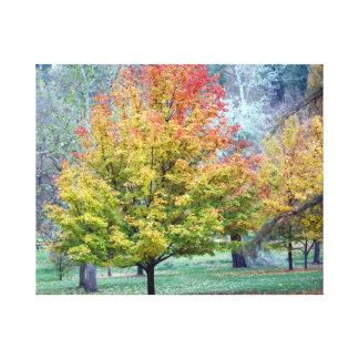 Placer del otoño lona envuelta para galerías