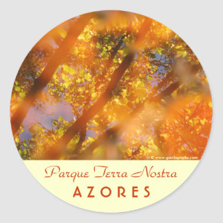 Placer del otoño pegatina redonda