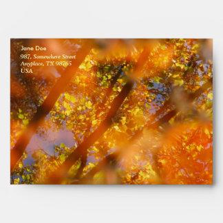 Placer del otoño sobres