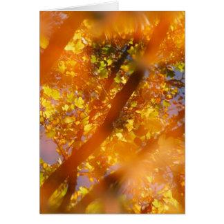 Placer del otoño tarjeta de felicitación