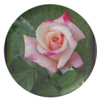 Placer doble Rose.jpg Plato De Comida