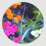 Placer floral hermoso etiquetas redondas