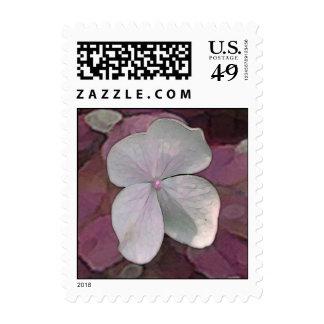 Placer floral para las postales sello