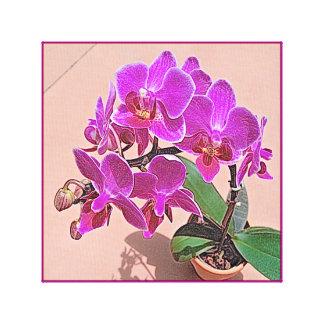 Placer púrpura de la orquídea lona estirada galerías