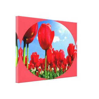 Placer rojo del tulipán impresiones en lona estiradas