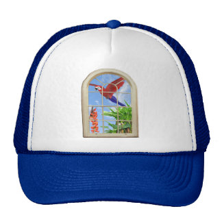 Placer tropical gorra