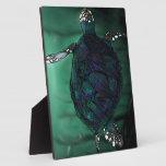 Plaga de la tortuga de mar placa para mostrar