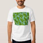 Plagiomnium Affine Plant Cells with Chloroplasts Dresses