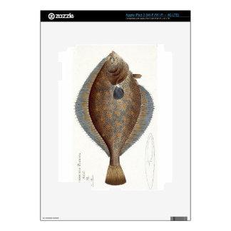 Plaice (Pleuronectes Platessa) plate XLII from 'Ic iPad 3 Decals