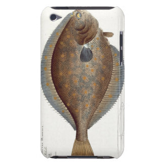 Plaice (Pleuronectes Platessa) plate XLII from 'Ic iPod Touch Case