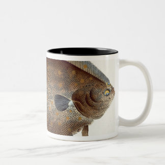 Plaice (Pleuronectes Platessa) plate XLII from 'Ic Two-Tone Coffee Mug