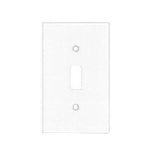 Plain Blank Light Switch Cover to DIY