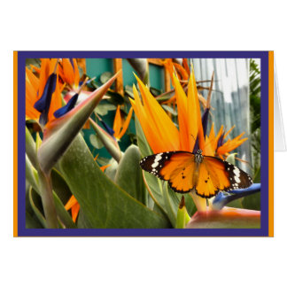 Plain Tiger butterfly Card