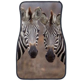 Plain Zebras, Kruger National Park Car Mat
