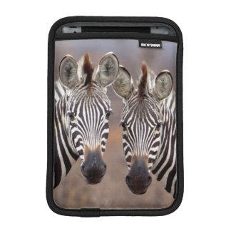 Plain Zebras, Kruger National Park iPad Mini Sleeve
