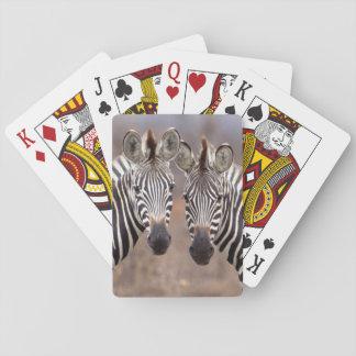 Plain Zebras, Kruger National Park Playing Cards