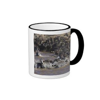Plains Zebra (Equus quagga) and Blue Wildebeest Ringer Mug
