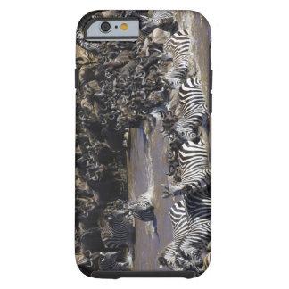 Plains Zebra (Equus quagga) and Blue Wildebeest Tough iPhone 6 Case