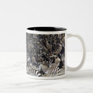 Plains Zebra (Equus quagga) and Blue Wildebeest Two-Tone Coffee Mug