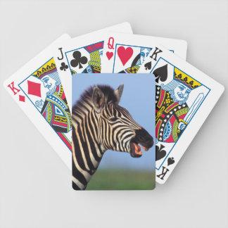 Plains Zebra (Equus Quagga) Calling Bicycle Playing Cards