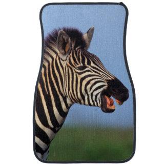 Plains Zebra (Equus Quagga) Calling Car Mat