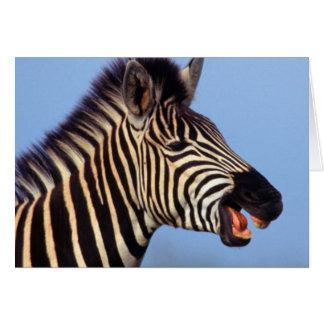 Plains Zebra (Equus Quagga) Calling Greeting Card