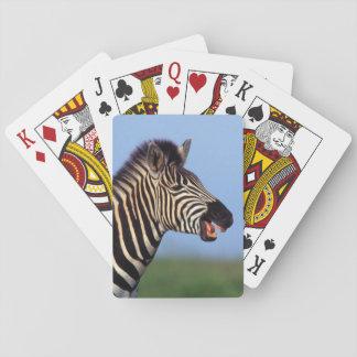 Plains Zebra (Equus Quagga) Calling Playing Cards
