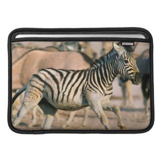 Plains Zebra (Equus Quagga) Foal Startled MacBook Air Sleeves