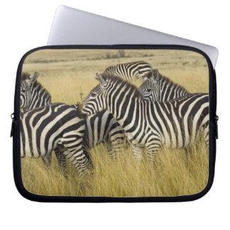 Plains Zebra (Equus quagga) in grass, Masai Mara 2 Laptop Sleeve