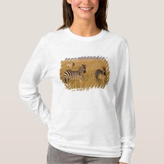 Plains Zebra (Equus quagga) in grass, Masai Mara T-Shirt