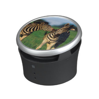 Plains Zebra (Equus Quagga) Pair Grooming, Tala Bluetooth Speaker