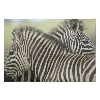 Plains Zebra (Equus quagga) pair, Haga Game Place Mat