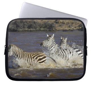 Plains Zebra (Equus quagga) running in water, Laptop Sleeve